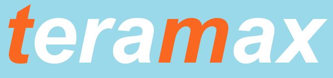 Teramax Informatica Logo