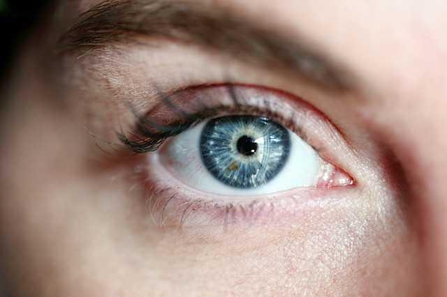 Teramax Vision